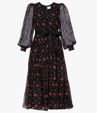 Erdem Lucina Dress Bud Embroidered Organza